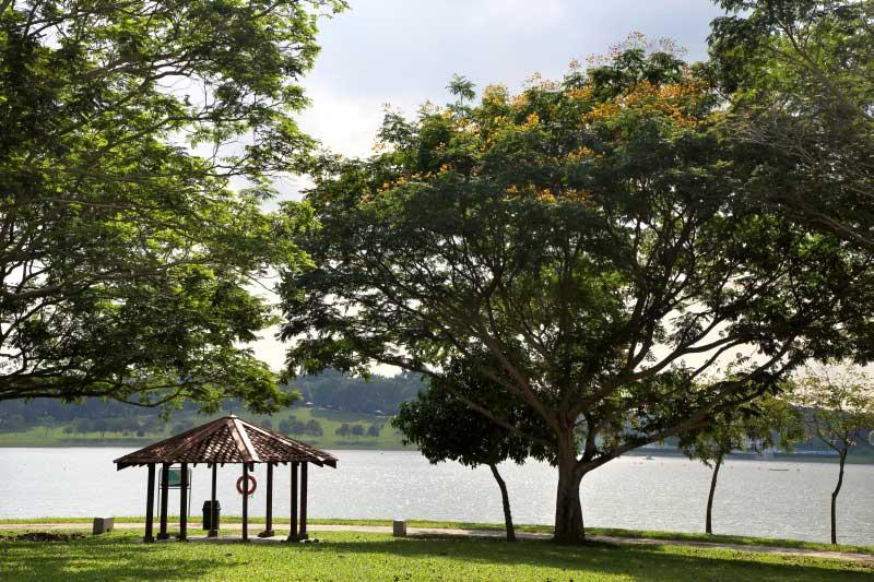 parc-central-residences-ec-bedok-reservoir